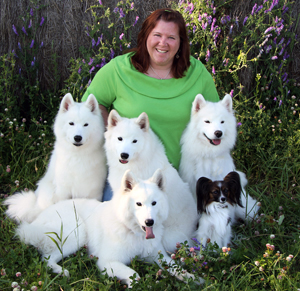 GJ Harper with Samoyeds and Papillon